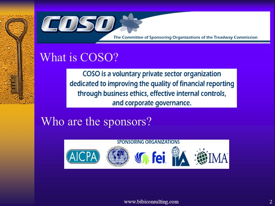 www.bibiconsulting.com2 What is COSO? Who are the sponsors?