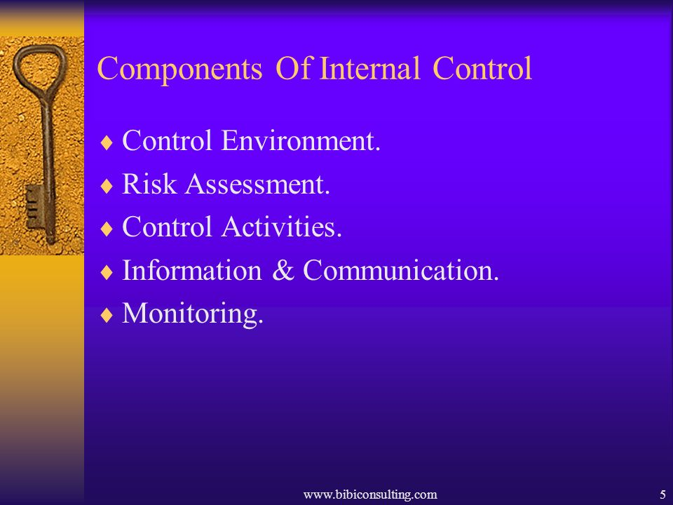 www.bibiconsulting.com5 Components Of Internal Control Control Environment. Risk Assessment. Control Activities. Information & Communication. Monitori