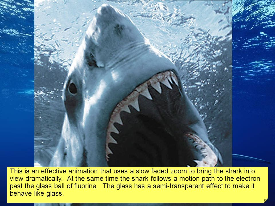 If fluorine was an animal, it would be a shark. The next slide shows the shark (fluorine) going after a circling electron. The animation runs automati