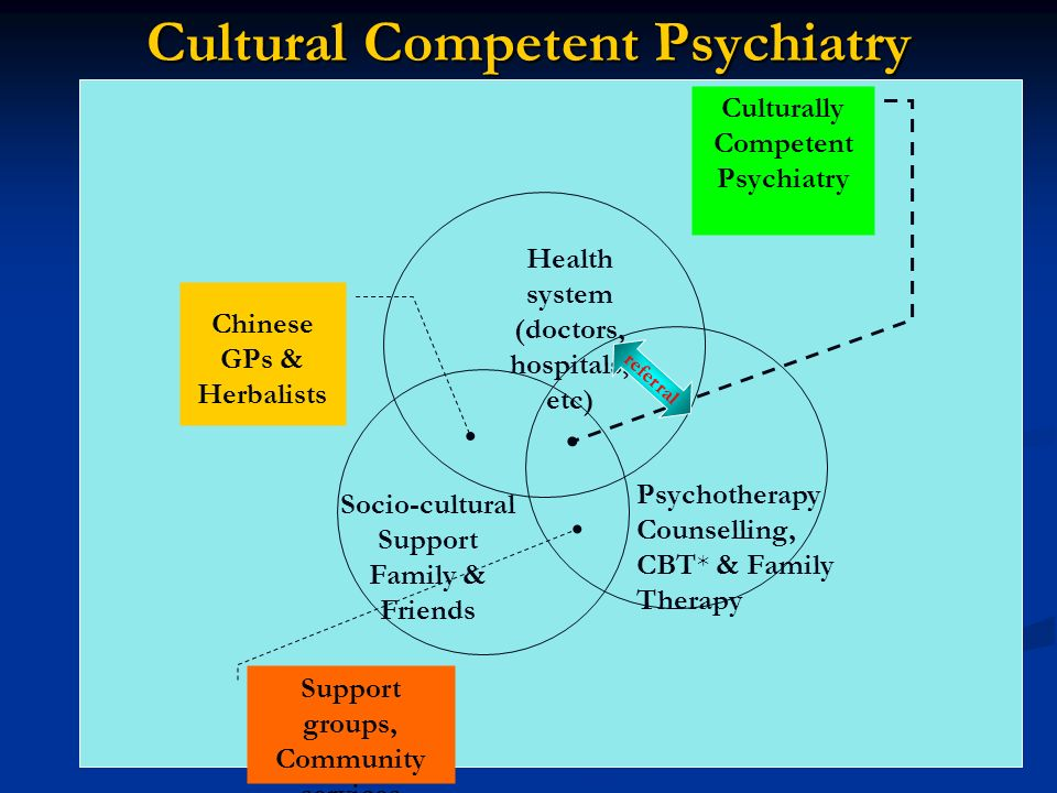 Cultural Competent Psychiatry Health system (doctors, hospitals, etc) Culturally Competent Psychiatry Chinese GPs & Herbalists Psychotherapy Counselli