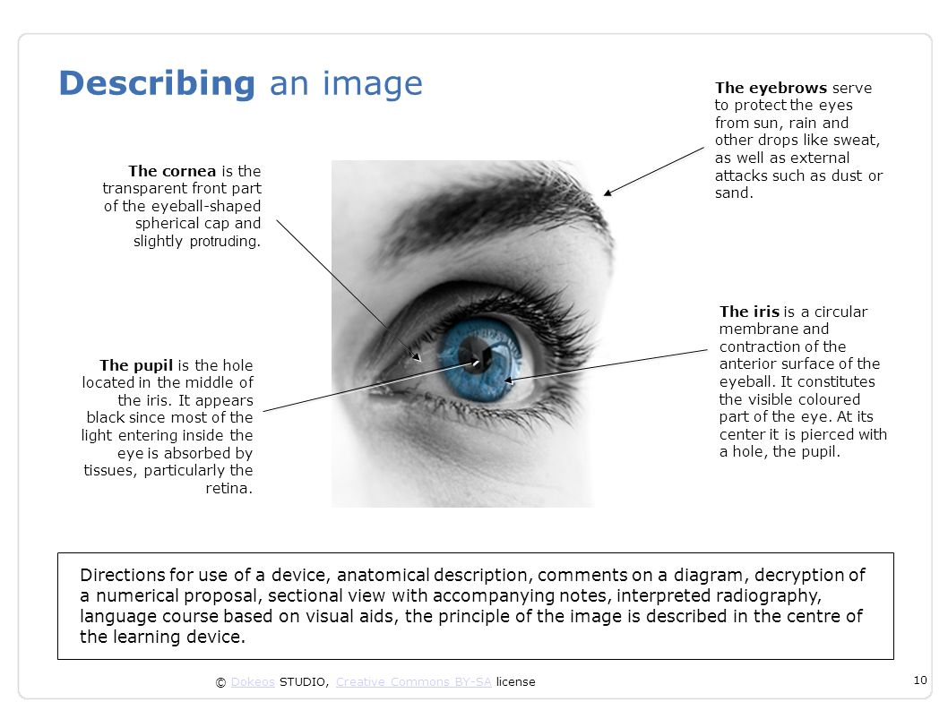 © Dokeos STUDIO, Creative Commons BY-SA licenseDokeosCreative Commons BY-SA 10 Describing an image Directions for use of a device, anatomical descript