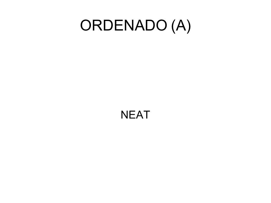 ORDENADO (A) NEAT