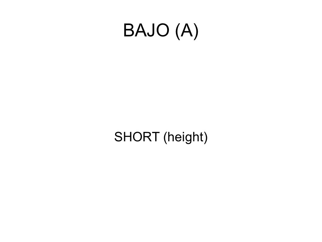 BAJO (A) SHORT (height)