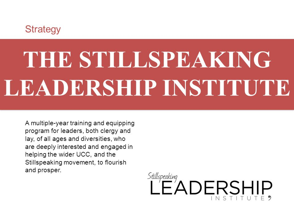 Strategy THE STILLSPEAKING LEADERSHIP INSTITUTE A multiple-year training and equipping program for leaders, both clergy and lay, of all ages and diver