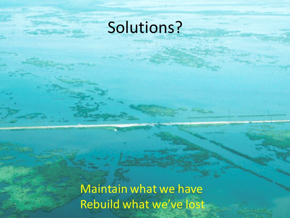 Solutions? Maintain what we have Rebuild what weve lost