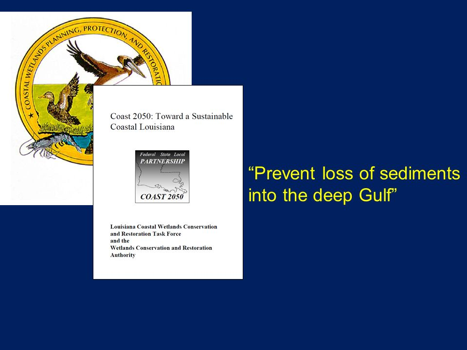 Prevent loss of sediments into the deep Gulf