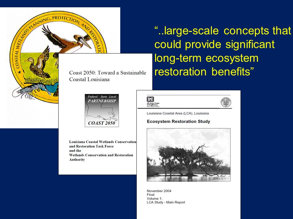 ..large-scale concepts that could provide significant long-term ecosystem restoration benefits