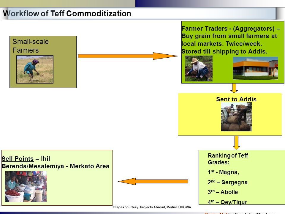 BoonaNet by Feedelix Wireless Small-scale Farmers Workflow of Teff Commoditization Farmer Traders - (Aggregators) – Buy grain from small farmers at lo