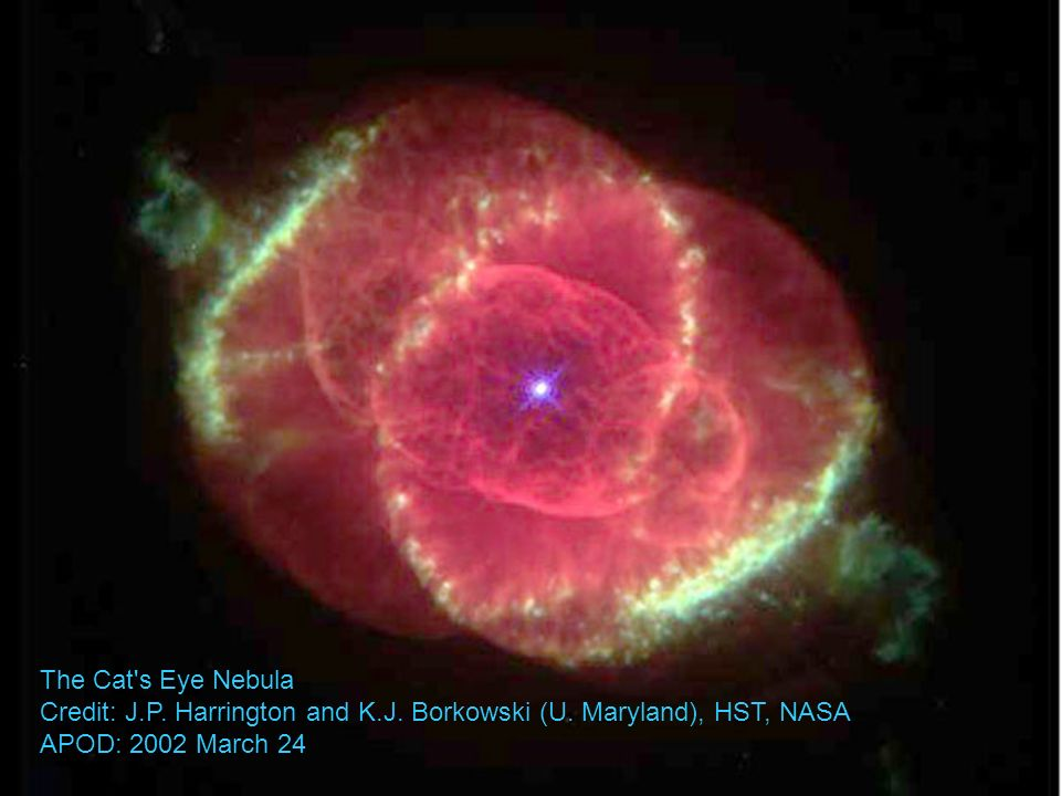 The Cat's Eye Nebula Credit: J.P. Harrington and K.J. Borkowski (U. Maryland), HST, NASA APOD: 2002 March 24