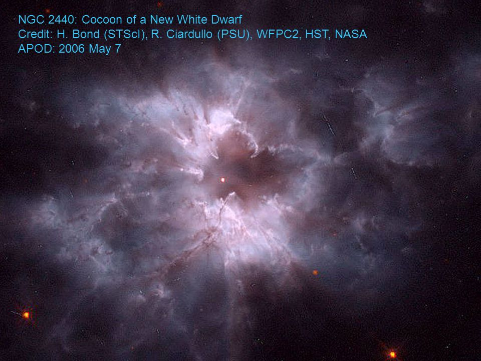 NGC 2440: Cocoon of a New White Dwarf Credit: H. Bond (STScI), R.