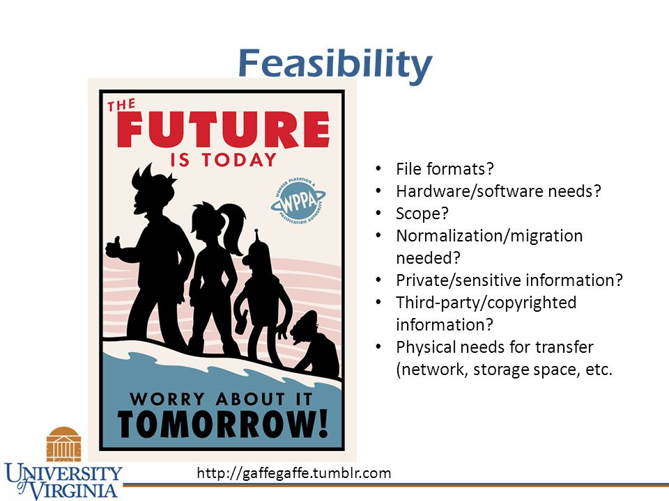 Feasibility File formats. Hardware/software needs.