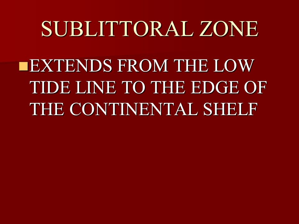SUBLITTORAL ZONE EXTENDS FROM THE LOW TIDE LINE TO THE EDGE OF THE CONTINENTAL SHELF EXTENDS FROM THE LOW TIDE LINE TO THE EDGE OF THE CONTINENTAL SHE
