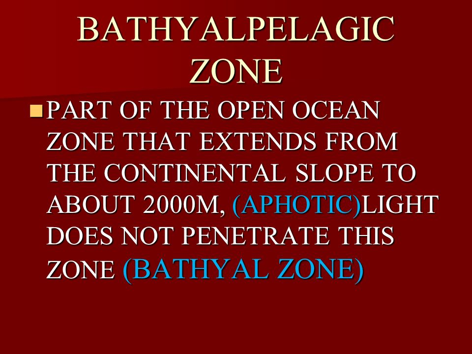 BATHYALPELAGIC ZONE PART OF THE OPEN OCEAN ZONE THAT EXTENDS FROM THE CONTINENTAL SLOPE TO ABOUT 2000M, (APHOTIC)LIGHT DOES NOT PENETRATE THIS ZONE (B
