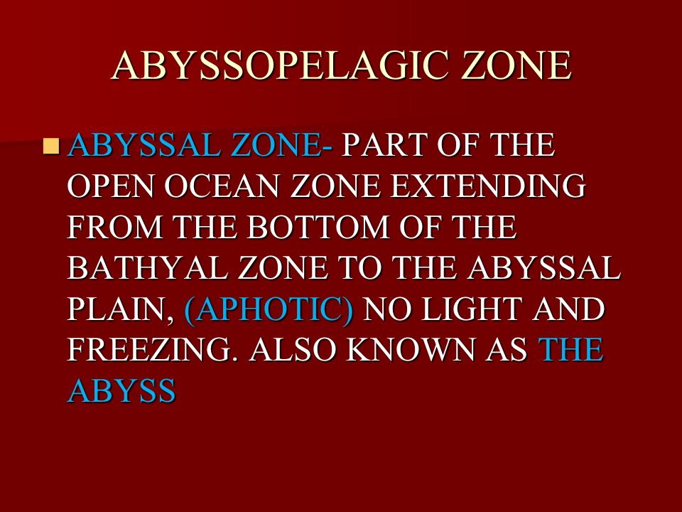 ABYSSOPELAGIC ZONE ABYSSAL ZONE- PART OF THE OPEN OCEAN ZONE EXTENDING FROM THE BOTTOM OF THE BATHYAL ZONE TO THE ABYSSAL PLAIN, (APHOTIC) NO LIGHT AN