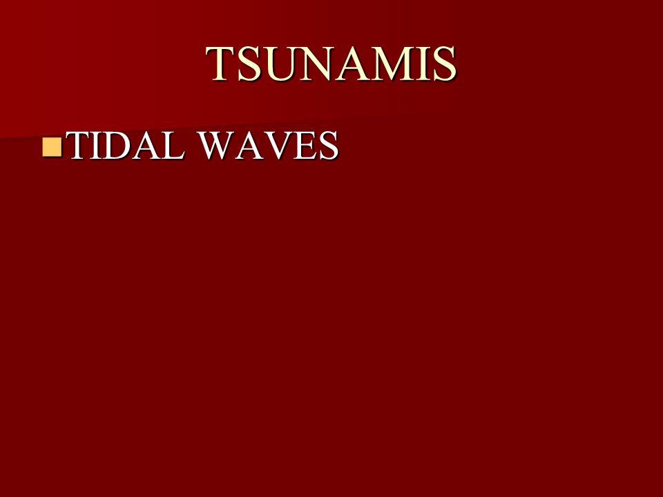 TSUNAMIS TIDAL WAVES TIDAL WAVES