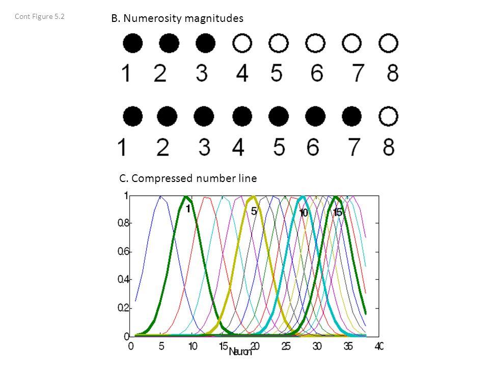 B. Numerosity magnitudes C. Compressed number line Cont Figure 5.2