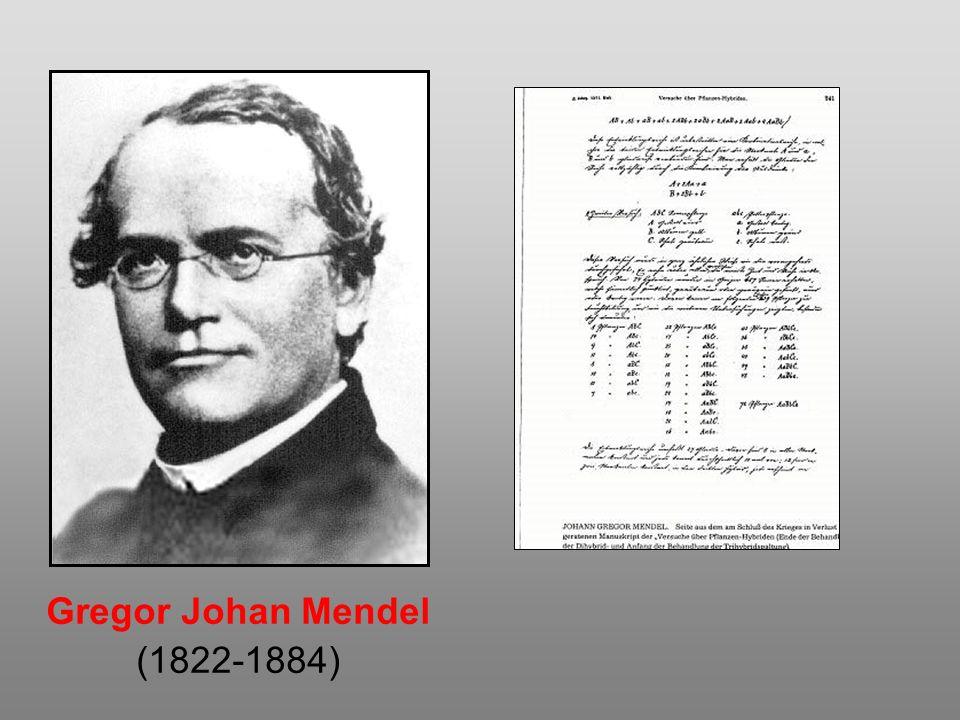 Gregor Johan Mendel (1822-1884)