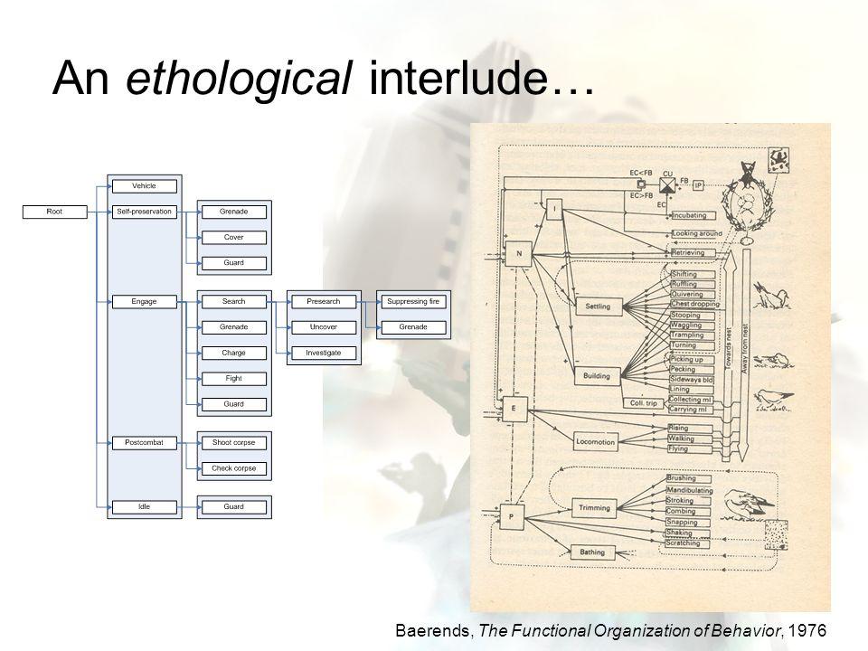 An ethological interlude… Baerends, The Functional Organization of Behavior, 1976