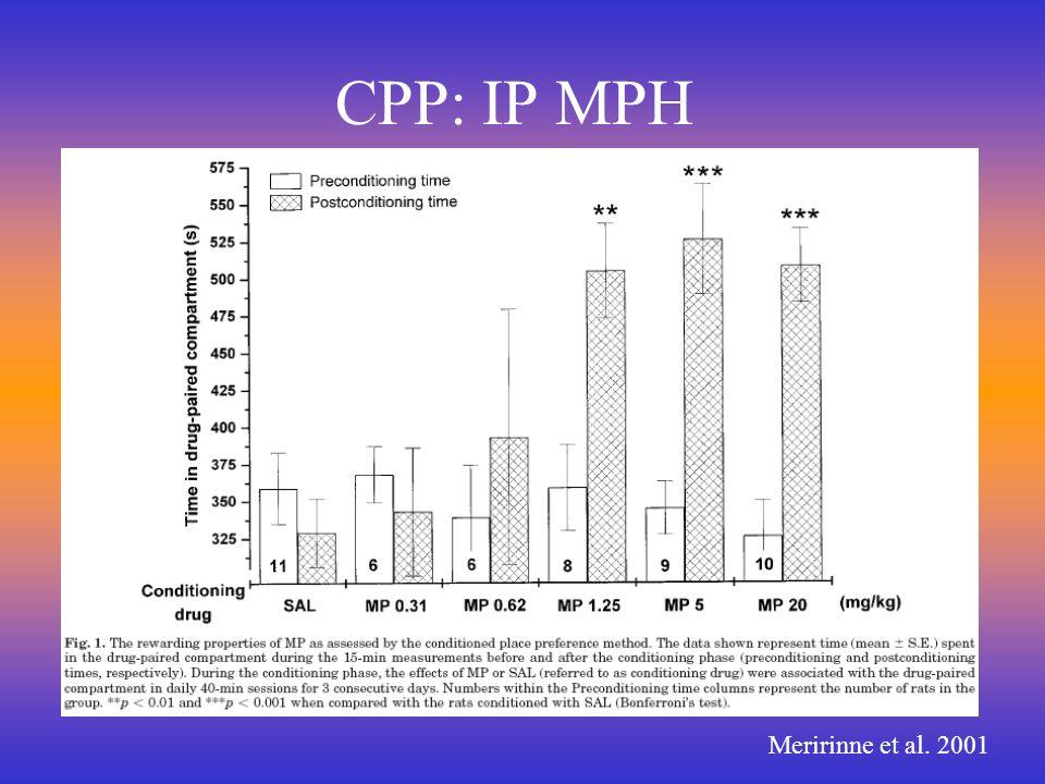 CPP: IP MPH Meririnne et al. 2001