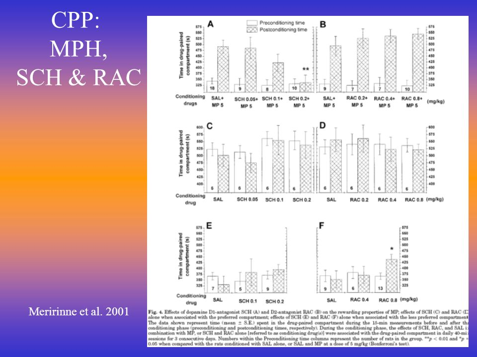 CPP: MPH, SCH & RAC Meririnne et al. 2001