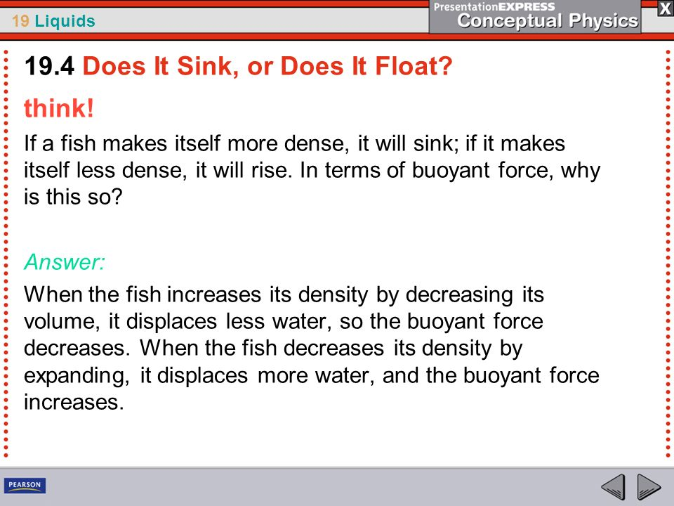 19 Liquids think! If a fish makes itself more dense, it will sink; if it makes itself less dense, it will rise. In terms of buoyant force, why is this