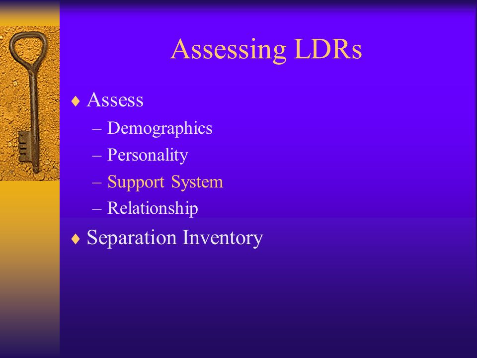 Assessing LDRs Assess –Demographics –Personality –Support System –Relationship Separation Inventory