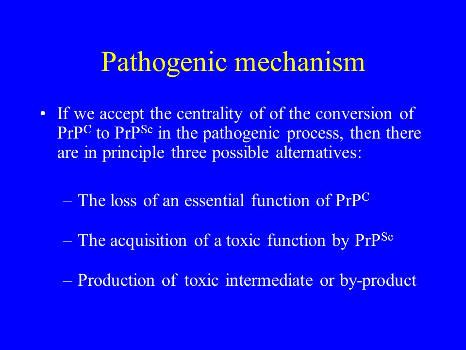 Pathogenic mechanism If we accept the centrality of of the conversion of PrP C to PrP Sc in the pathogenic process, then there are in principle three