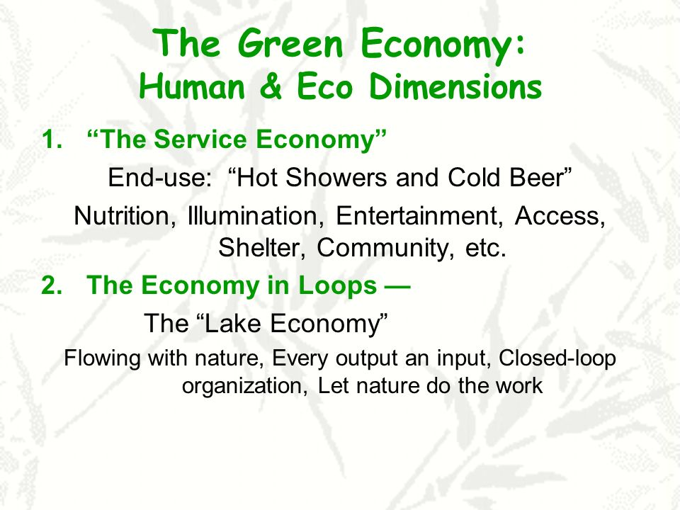 The Green Economy: Human & Eco Dimensions 1.The Service Economy End-use: Hot Showers and Cold Beer Nutrition, Illumination, Entertainment, Access, She
