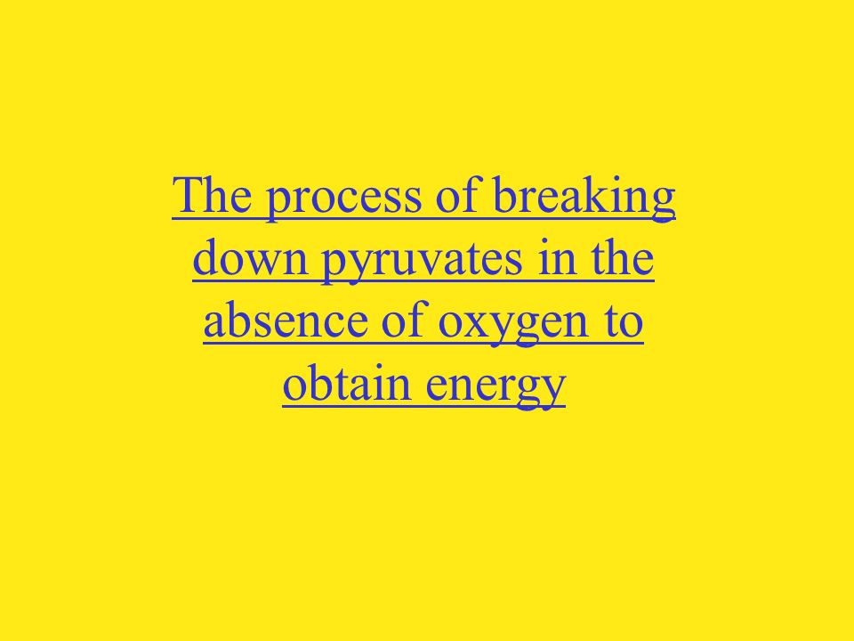 The process by which living things release the energy stored in food molecules