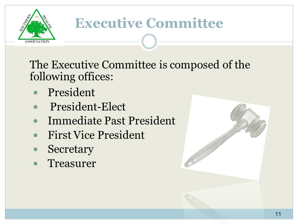 Executive Committee The Executive Committee is composed of the following offices: President President-Elect Immediate Past President First Vice President Secretary Treasurer 11