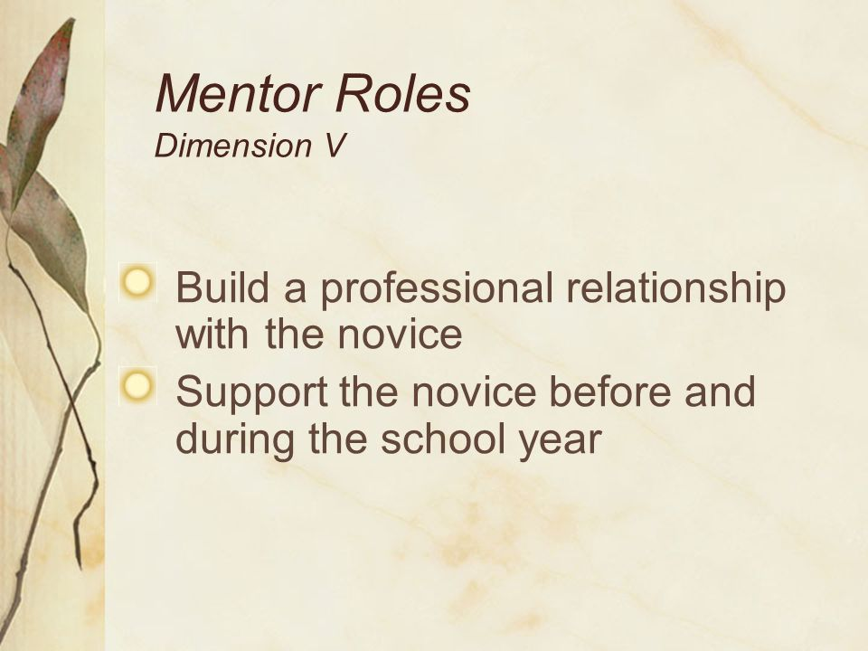 Mentor Roles Dimension V Build a professional relationship with the novice Support the novice before and during the school year