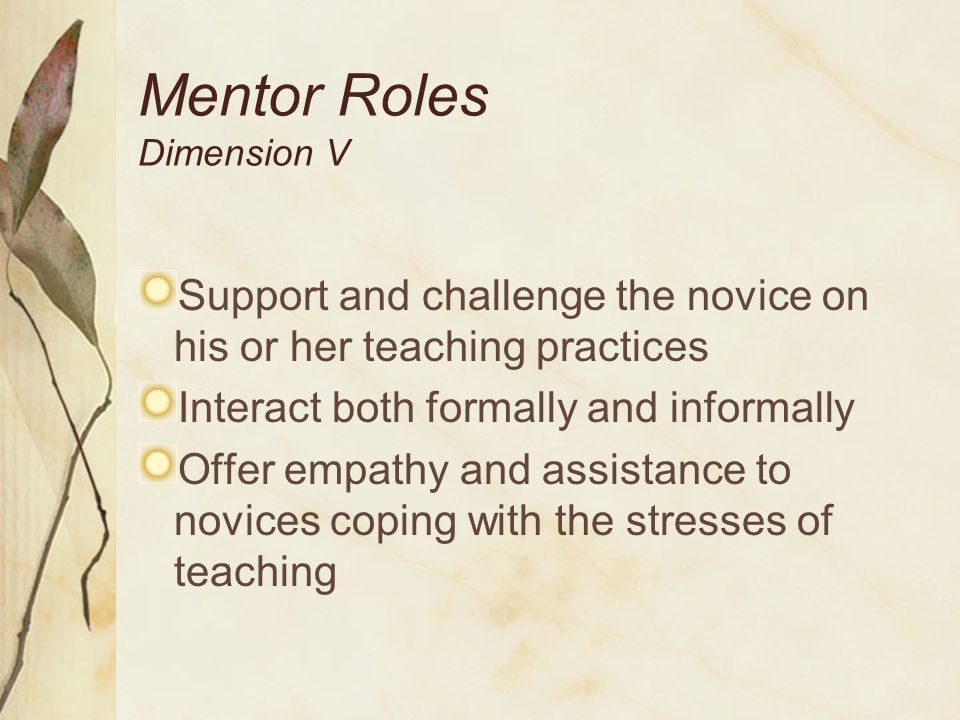 Mentor Roles Dimension V Support and challenge the novice on his or her teaching practices Interact both formally and informally Offer empathy and ass