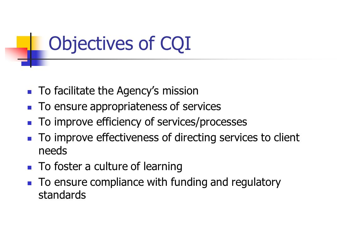 Objectives of CQI To facilitate the Agencys mission To ensure appropriateness of services To improve efficiency of services/processes To improve effec