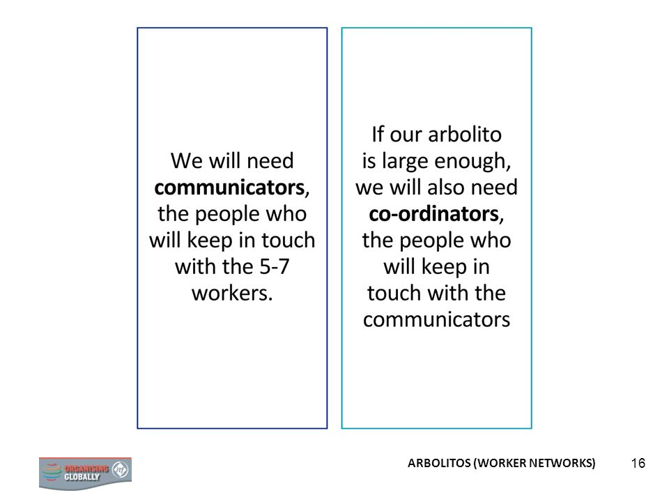 16 ARBOLITOS (WORKER NETWORKS)