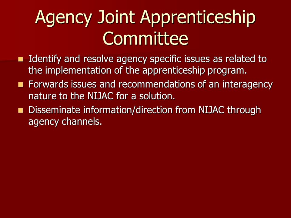 Agency Joint Apprenticeship Committee Identify and resolve agency specific issues as related to the implementation of the apprenticeship program. Iden