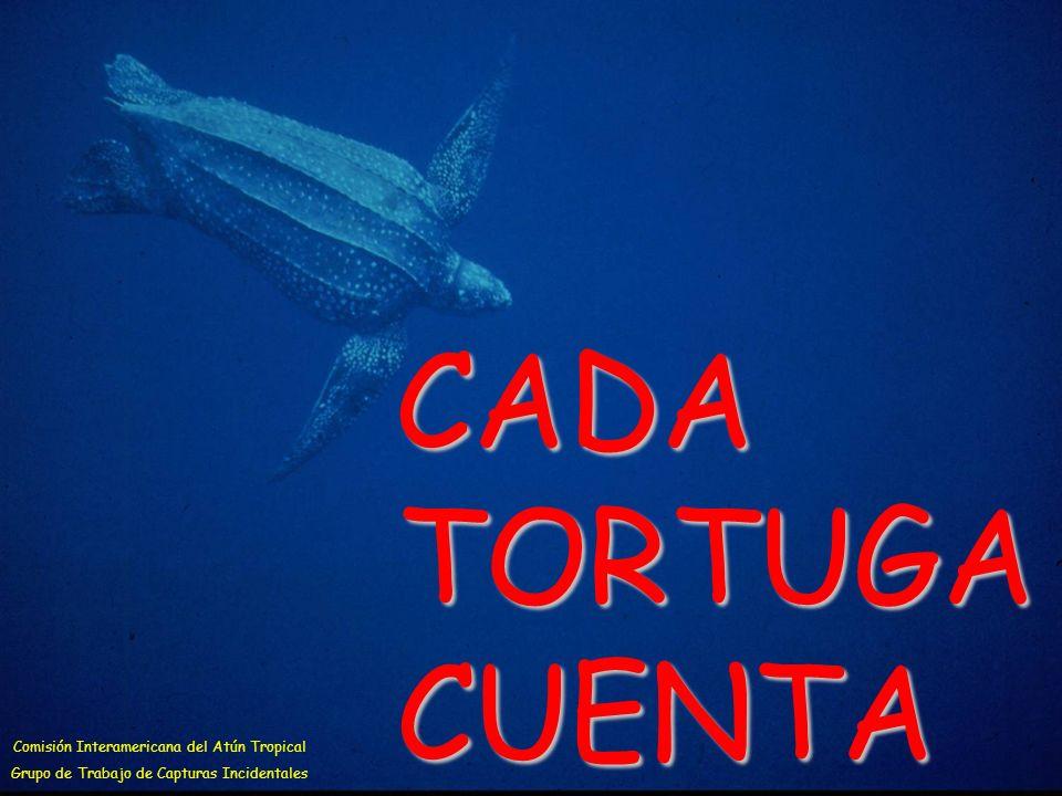 CADA TORTUGA CUENTA Comisión Interamericana del Atún Tropical Grupo de Trabajo de Capturas Incidentales