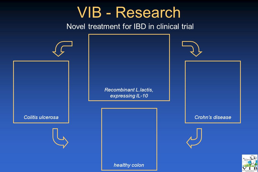 VIB - Research healthy colon Colitis ulcerosaCrohns disease Recombinant L.lactis, expressing IL-10 Novel treatment for IBD in clinical trial