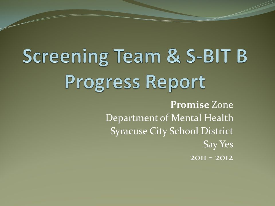 Promise Zone Department of Mental Health Syracuse City School District Say Yes 2011 - 2012