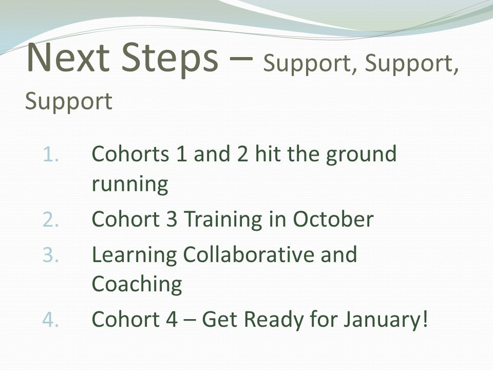 Next Steps – Support, Support, Support 1. Cohorts 1 and 2 hit the ground running 2. Cohort 3 Training in October 3. Learning Collaborative and Coachin