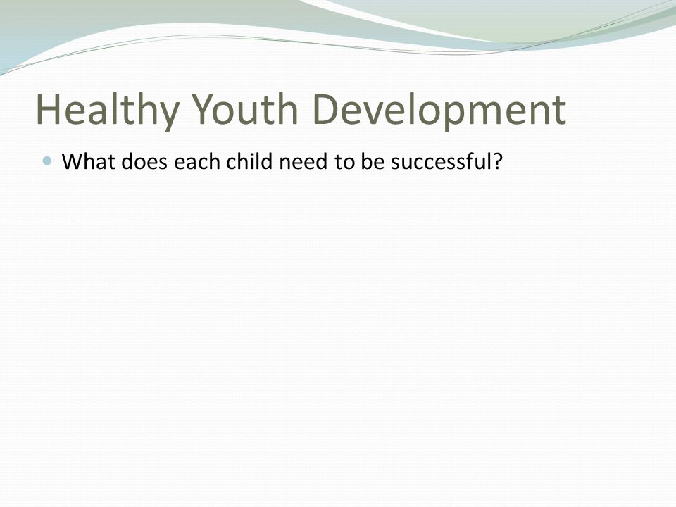 Healthy Youth Development What does each child need to be successful?