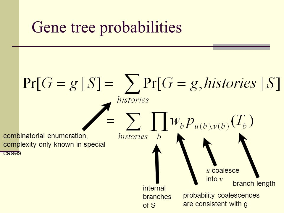 internal branches of S combinatorial enumeration, complexity only known in special cases u coalesce into v probability coalescences are consistent wit