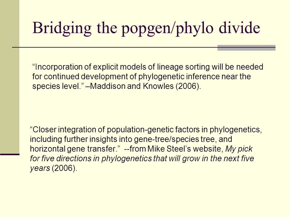 Bridging the popgen/phylo divide Closer integration of population-genetic factors in phylogenetics, including further insights into gene-tree/species