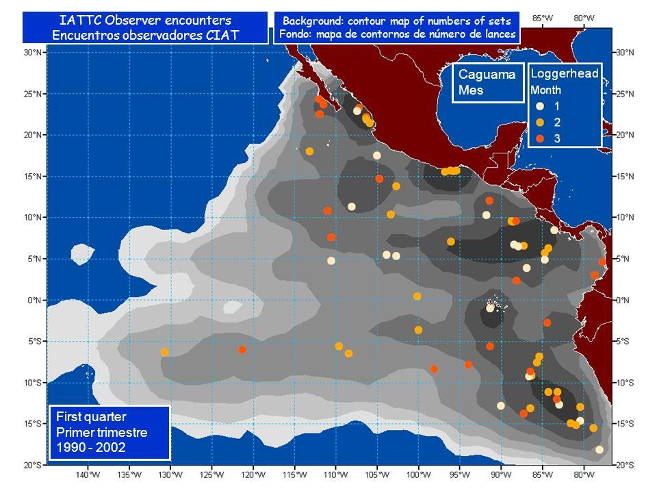 Caguama Mes First quarter Primer trimestre 1990 - 2002 IATTC Observer encounters Encuentros observadores CIAT Background: contour map of numbers of sets Fondo: mapa de contornos de número de lances