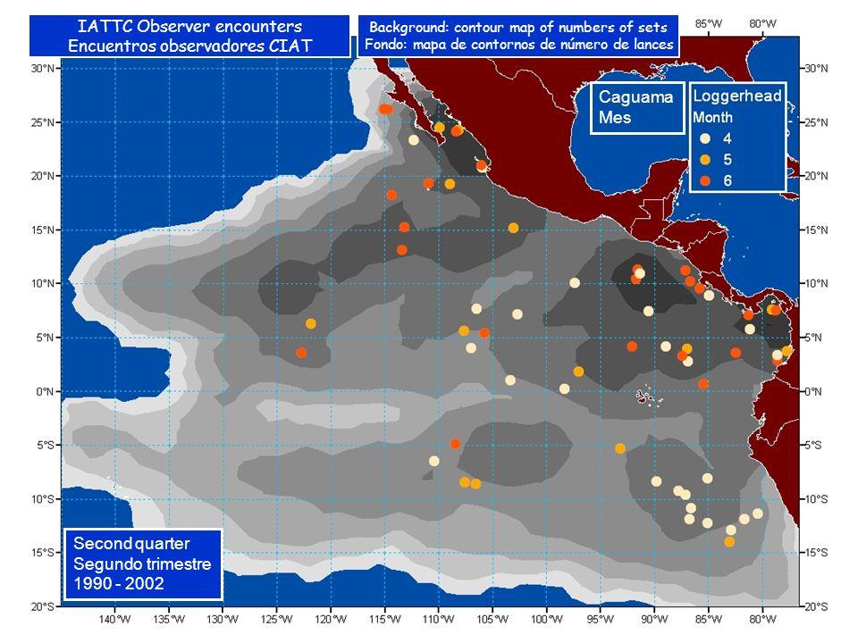 Caguama Mes Second quarter Segundo trimestre 1990 - 2002 IATTC Observer encounters Encuentros observadores CIAT Background: contour map of numbers of sets Fondo: mapa de contornos de número de lances