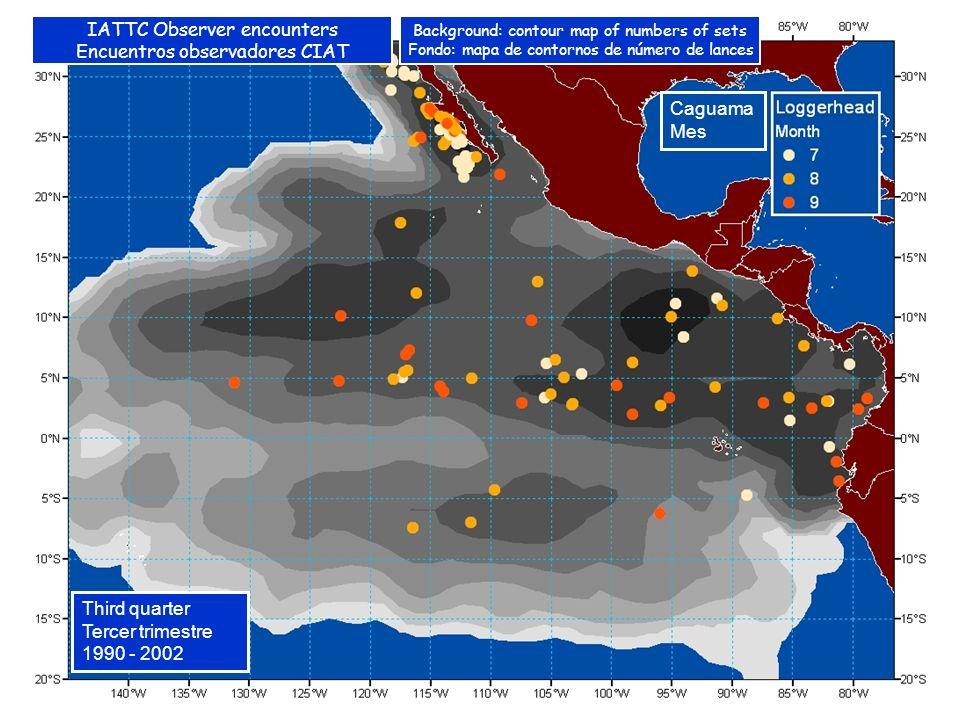 Caguama Mes Third quarter Tercer trimestre 1990 - 2002 IATTC Observer encounters Encuentros observadores CIAT Background: contour map of numbers of sets Fondo: mapa de contornos de número de lances