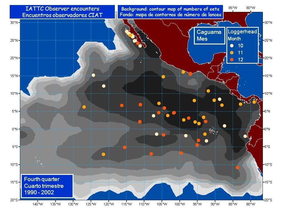 Caguama Mes Fourth quarter Cuarto trimestre 1990 - 2002 IATTC Observer encounters Encuentros observadores CIAT Background: contour map of numbers of sets Fondo: mapa de contornos de número de lances