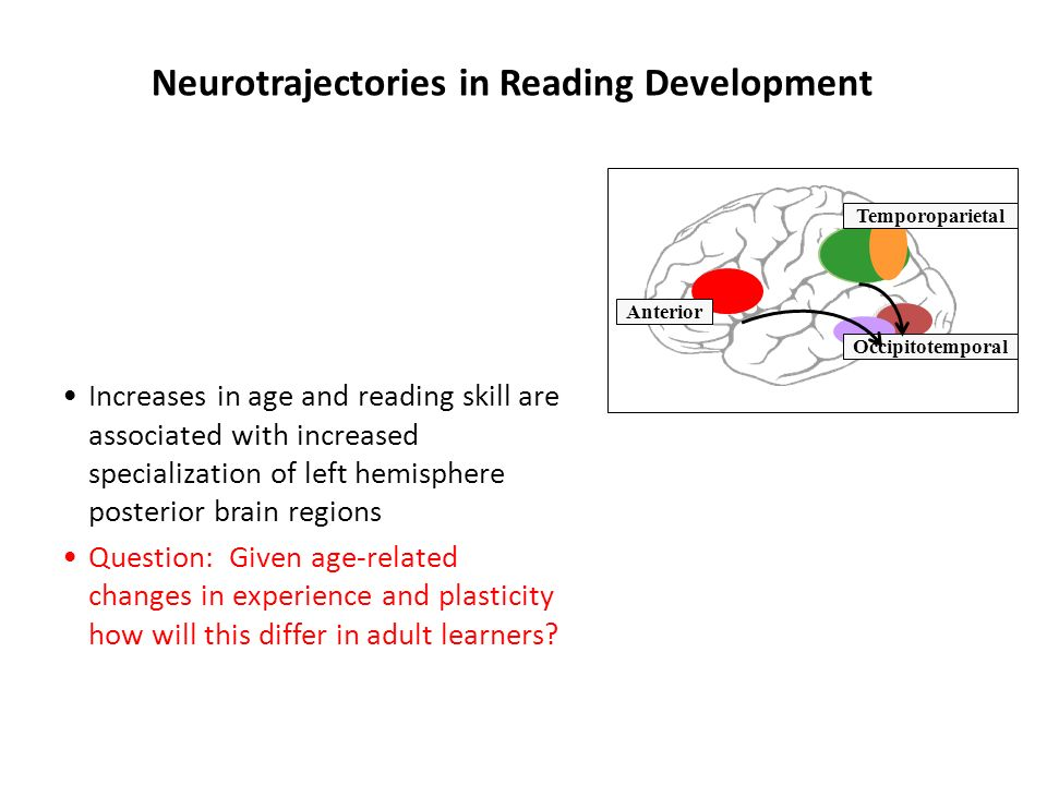 The Neurobiology of Reading Disability Functional/structural neuroimaging indicate that poor readers, especially children, adolescents, and adults with reading disabilities fail to organize left hemisphere temporoparietal and occipitotemporal brain regions into a coherent reading circuit: 1) unstable and reduced brain activation 2) reduced connectivity 3) problems in learning, and consolidation of new learning 4) reduced grey matter volume 5) white matter tract anomalies