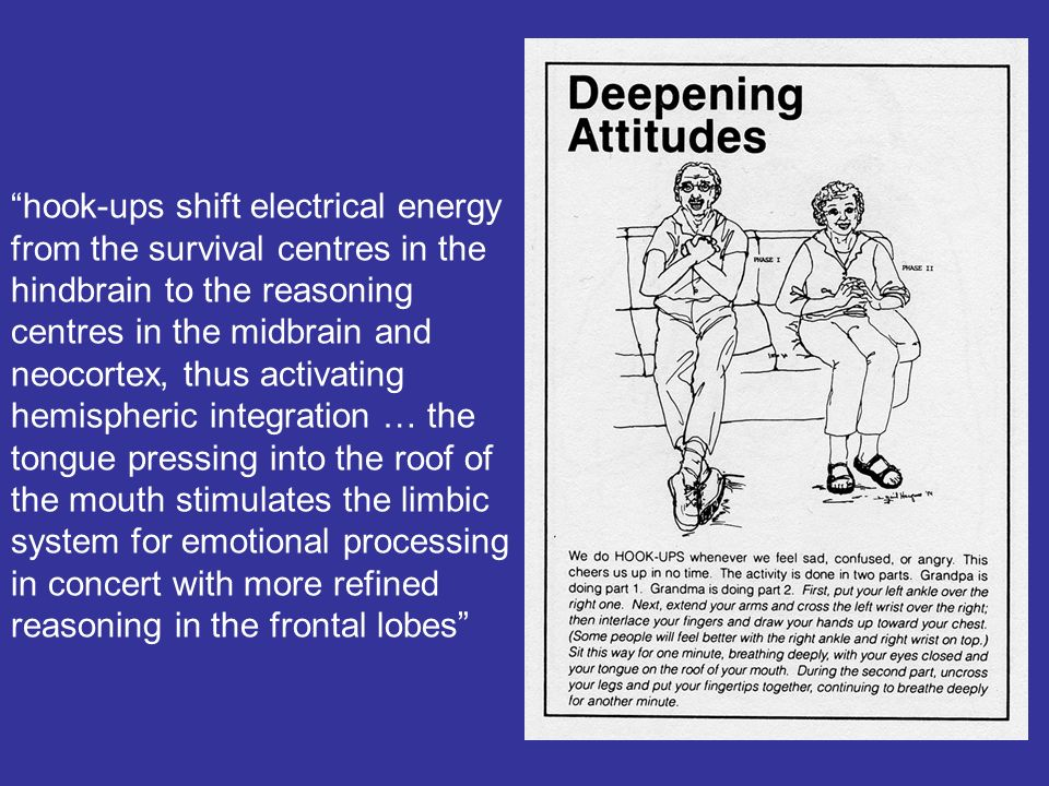 hook-ups shift electrical energy from the survival centres in the hindbrain to the reasoning centres in the midbrain and neocortex, thus activating he