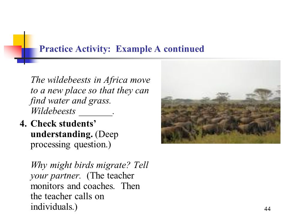 44 Practice Activity: Example A continued The wildebeests in Africa move to a new place so that they can find water and grass. Wildebeests _______. 4.