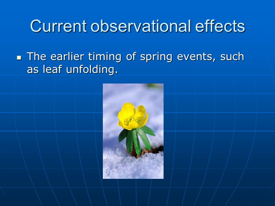 Current observational effects The earlier timing of spring events, such as leaf unfolding. The earlier timing of spring events, such as leaf unfolding
